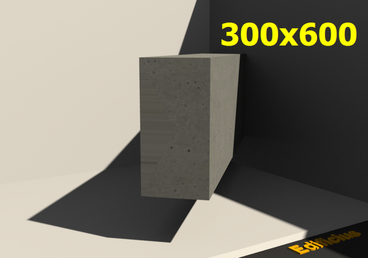 3D Sections - 300x600 - ACCA software
