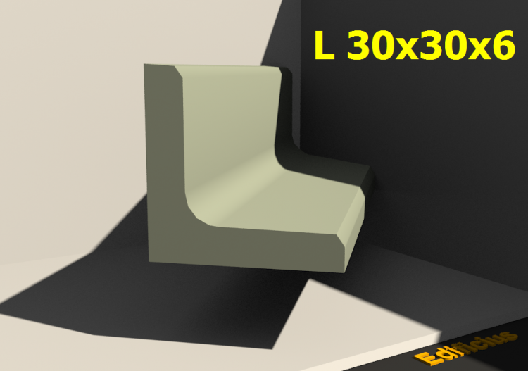 3D Profiles - L 30x30x6 - ACCA software