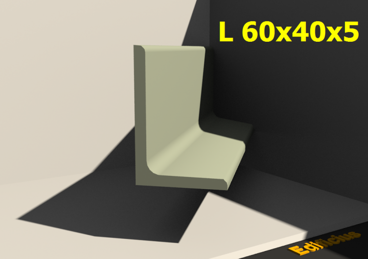 L 60x40x5 - ACCA software
